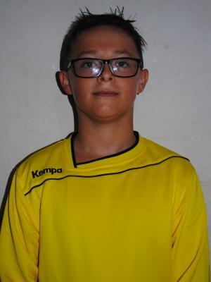 David Alin Dascalu