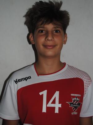 Razvan Nitoiu
